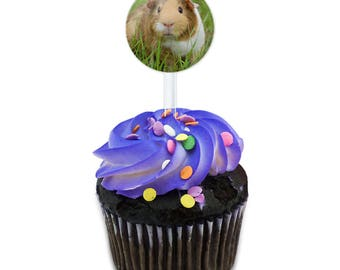 Guinea Pig Cavia Cake Cupcake Toppers Picks Set