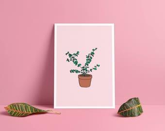 Poster • eucalyptus & card