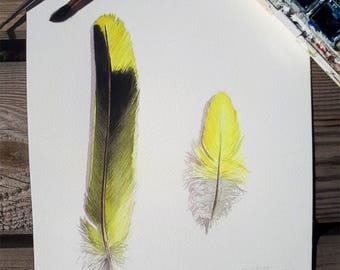 Aquarellle feather / Original Watercolor Feather