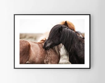 Horses photography. Printable horses. Nature poster. Instant download