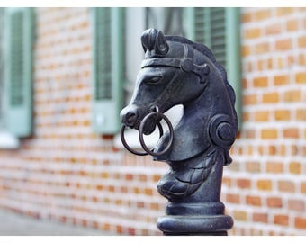 New Orleans photography, Louisiana, hitching post, French Quarter photography, fine art photography, black horse, travel photography, 11x14