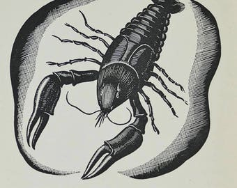 Lobster, wood engraving by J.E.Maunton. Fish print