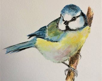 "Blue Tit 12"" x 10"" Original watercolour painting"