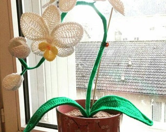 Crochet orchid flowers