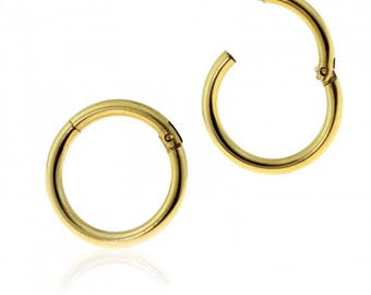 Gold Plated over 316L Surgical Steel Hinged Segment Ring