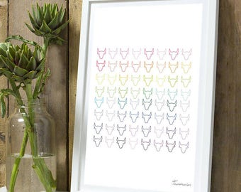 Heads bulls colors A4 unframed print