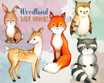 Woodland Baby Animals Clipart - Watercolor Clipart - Forest Animals Clipart Set - Digital Printables - Digital Clip Art INSTANT DOWNLOAD