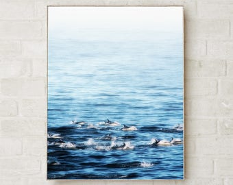 Dolphin Wall Art Wildlife Photography Prints Coastal Decor Wildlife Art Prints Wildlife Prints Dolphin Decor Coastal Wall Art Sea Art