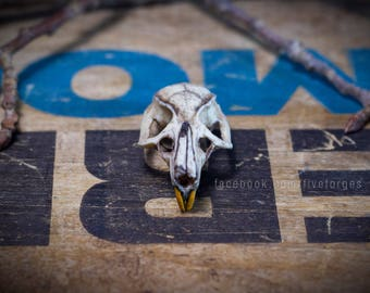 Rat skull 2.0