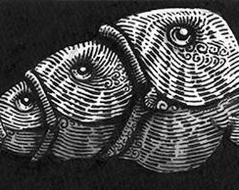 Mini Fishes by HerbRobert- a signed giclee print on archival art paper of an ink artwork