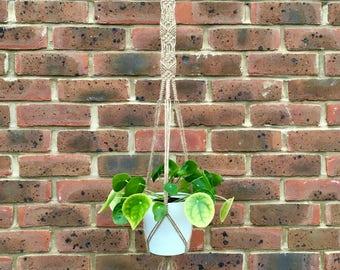 Fancy Frank Jute Macrame Plant Hanger