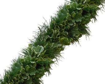 Fresh Garland - Tree Fern & Variegated Pittosporum