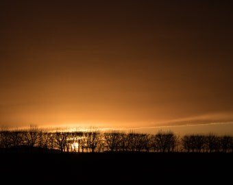 Hedgerow Sunset on Farmland near Therfield, North Hertfordshire December 2017