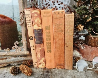 Old Books - Fun Variety of Pretty Books FREE SHIPPING