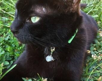 Cat Collar Charm, Cat Charm, Cat Bling, Cat Accessory, Pet Collar Charm, Dog Collar Charm, Dog Charm, Dog Accessory, Pet Charm, Witch Hat