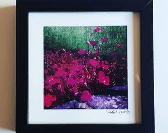 buttercup framed photoart