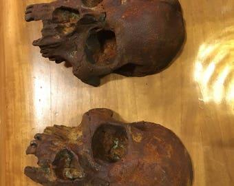Cast human skulls