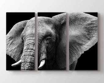 Large Wall Art Animal Canvas Print - Close Up Black and White Elephant