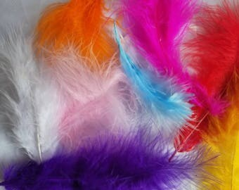 25 pcs Assorted Color Feathers, Feather for Craft Projects, Plumas para Proyectos, Plumas de various colores 25 pcs
