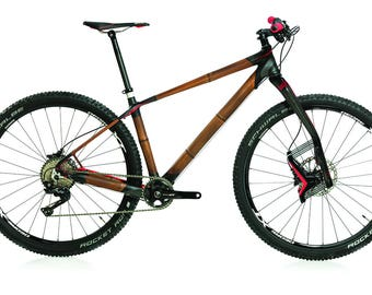 Bamboo mountain bike