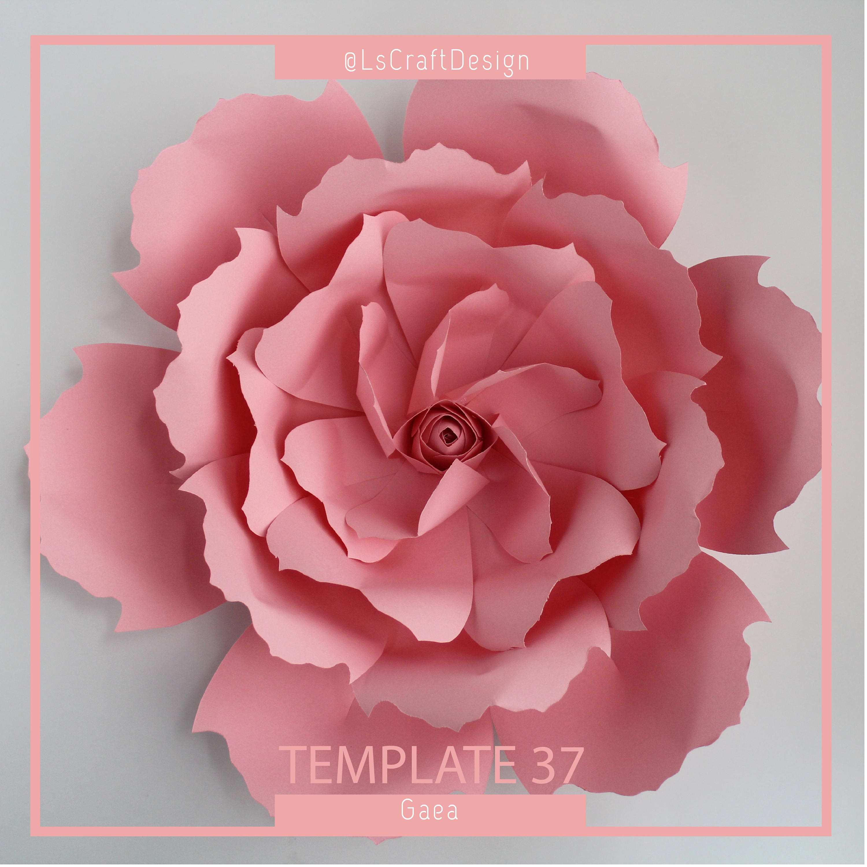 Paper Flower Template Pdf Paper Flower Paper Flower Kit Diy Paper