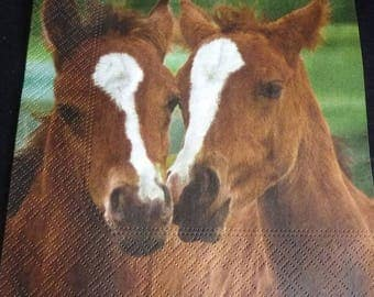 Paper towel pretty foals