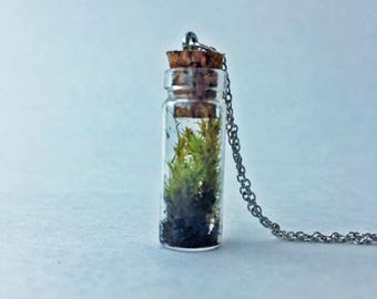 Tiny Terrarium Necklace Lanky & Star Moss 1in Cylinder