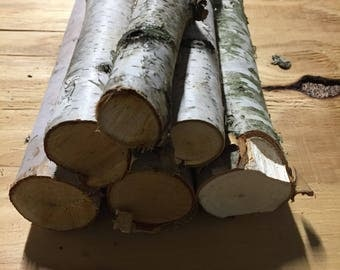 6 Decorative Birch Logs