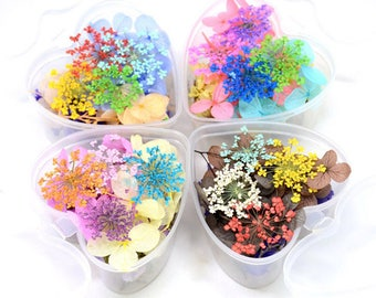 Mixed dried flower,Dried Pressed Flowers,Real Pressed Flower,dried flowers,preserved fresh flower,real dried flowers,dried flowers mix