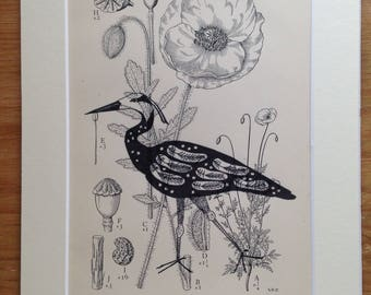 Heron print, Heron Art, Botanical Art, Bird Lovers Gift, Home Decor