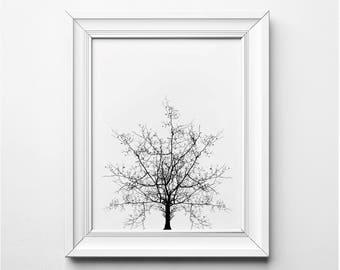 Tree Print, Tree Illustration, Tree Wall Art, Tree Art, Black and White Tree Art, Printable Tree, Minimalist Decor, Modern Art Illustration