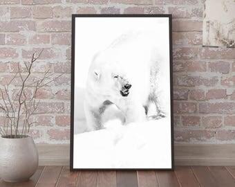 Digital image - Polarbear