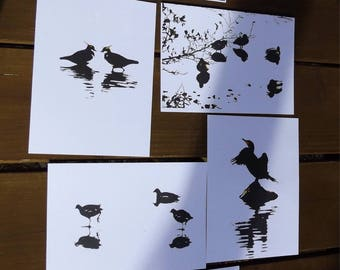 6 Wildlife art postcards, comprises of a set of six different animal postcard images of waterbirds