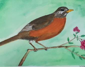 Young Robin Watercolor