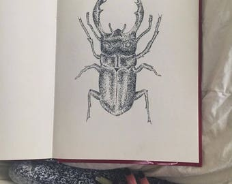 Scarab Pen and Ink Print