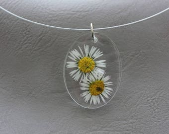 Choker + oval resin pendant dried daisies flowers