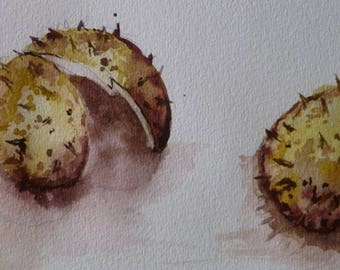 Watercolor and the little Brown from India