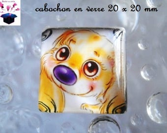1 cabochon clear square 20 x 20 mm miss my dog theme