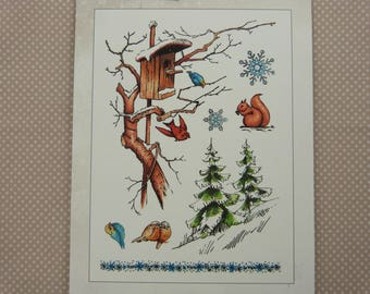 Set of stamps to mount transparent winter nature patterns