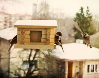 Wooden Feeder/ Bird seed Feeder/ Unlimited bird Feeder/ Bird house/ Bird seed holders/ Bird feeders handmade/ Wooden feeders/ Birdhouse kits