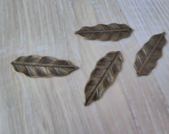 Leaf shaped charm