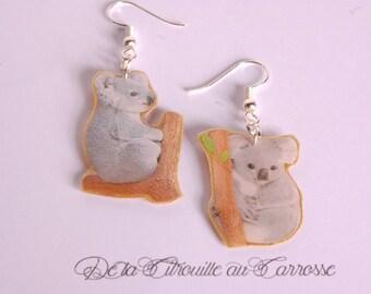 Koala on a branch earrings