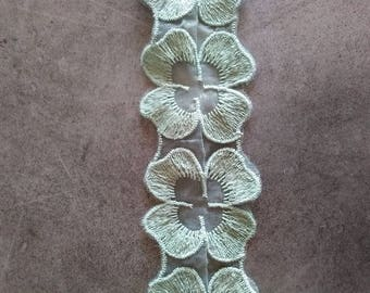 Mint flowers Ribbon