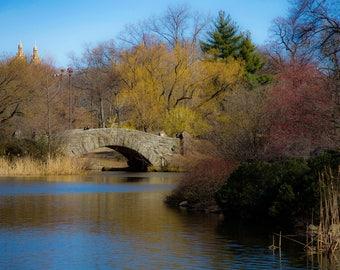 Bridge in Central Park in Early Spring