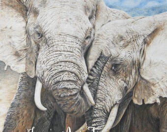 Elephant print, limited edition, hand signed fine art giclee print - 'Trunks of Love'
