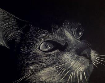 Retratos de Animales Personalizados