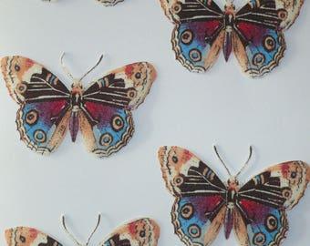 Série de magnets papillons multicolores identiques