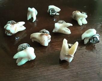 REAL Human Tooth Pin