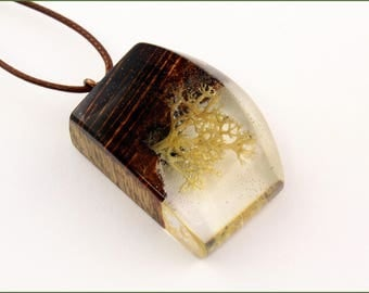 Wooden pendant with real lichen in resin