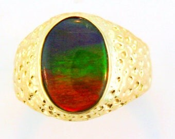 Canadian Ammolite set on 14k Yellow Gold Men's Ring.